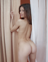 Divina A is completely naked from beginning to end today in this Erotic Beauty photo gallery you get to see the gorgeous short-haired brunette shamelessly show off her smoking-hot body for your viewing pleasure.