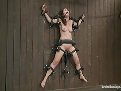 Ally Ann And Princess Donna Dolore And Ashley Jane - Device Bondage