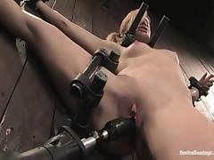 Ally Ann - Device Bondage