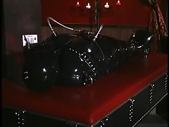 Redhead Sasha Sits On Latex Gimp's Face